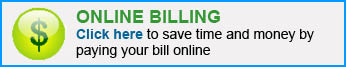 ONLINE_BILL PAY